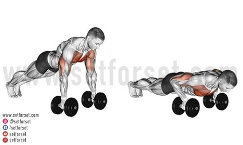 benefits of dumbbell chest exercises