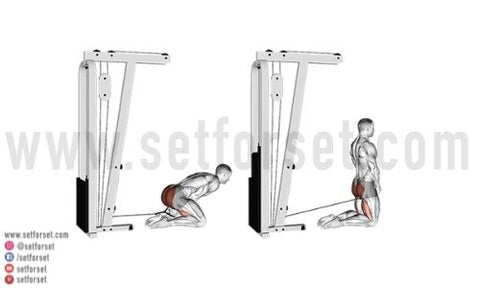 cable glutes