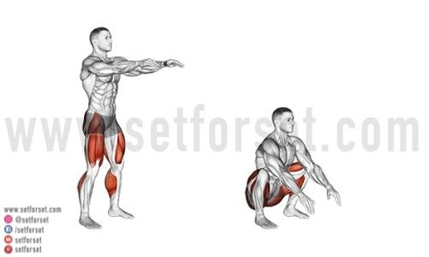 best stretches before squatting