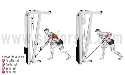 cable back exercises