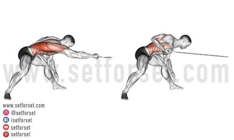 cable exercises for back