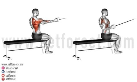 cable exercises for back fat