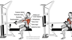 cable exercises for the rhomboids