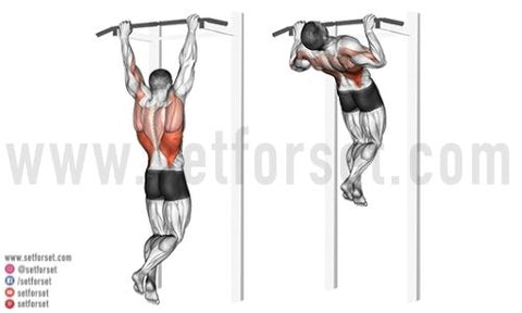 captains chair exercises at home