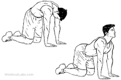 t-spine mobility test