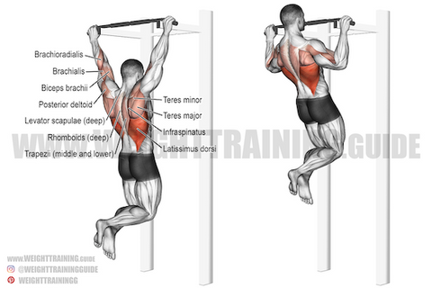 compound exercise routines