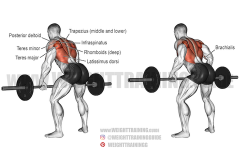 compound exercises for back