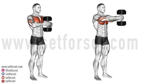 dumbbell chest workout at home