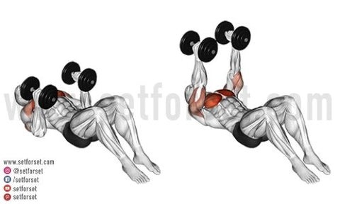 dumbbell pec exercises no bench