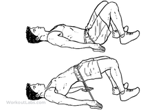 exercises for the glutes