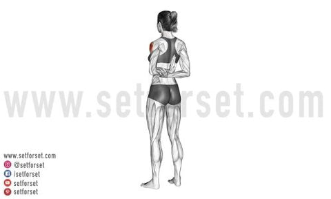 front deltoid stretches