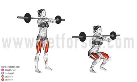 front squat beginners