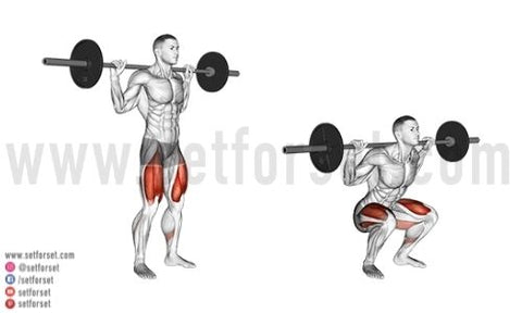 high bar back squat muscles worked