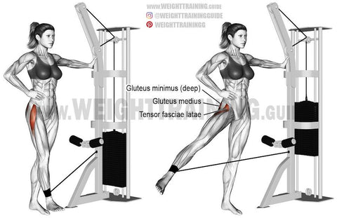 hip abductor exercise with cable machine