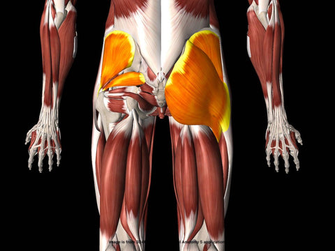 hip abductor strengthening exercises