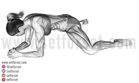 hip adductor exercises without machine