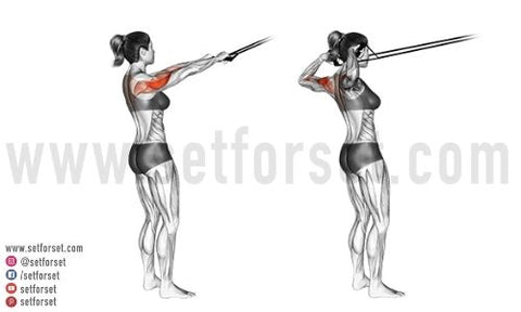 how do you target the lateral deltoid