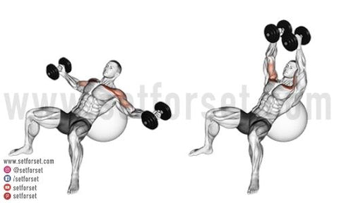 how to do dumbbell chest exercises without a bench