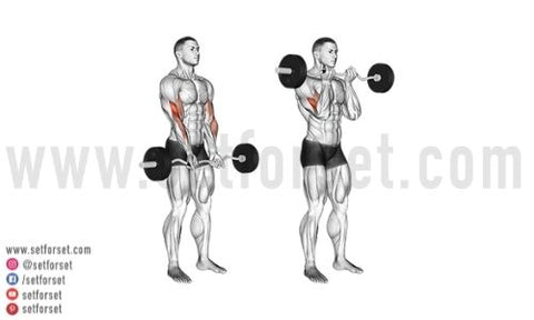 how to hold an ez curl bar