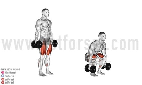 how to squat with dumbbells