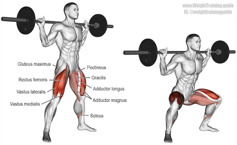 how to squat without hip pain