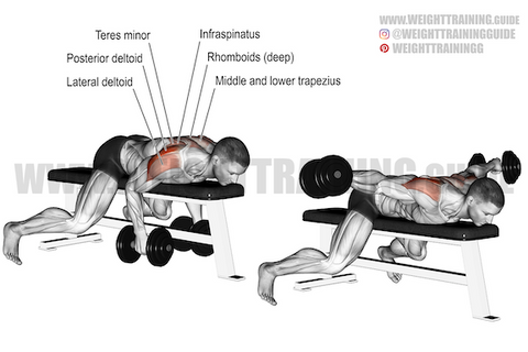 how to target rhomboid muscles
