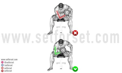 inner bicep workout