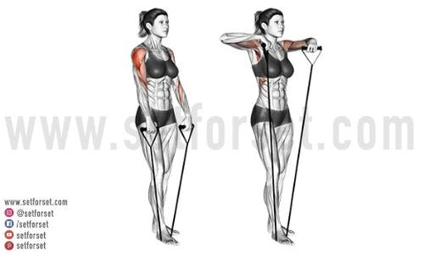 lateral delt exercises