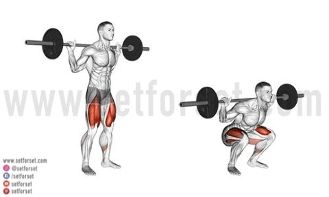 low bar back squat how to