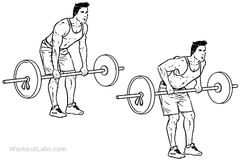 middle trap exercises