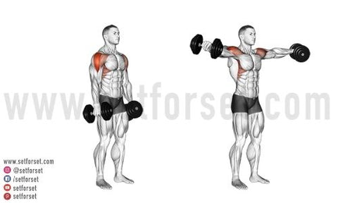 outer deltoid exercises