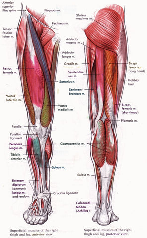 exercises for patellofemoral pain syndrome