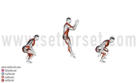 plyo exercises for beginners