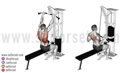 pull down cable back exercises