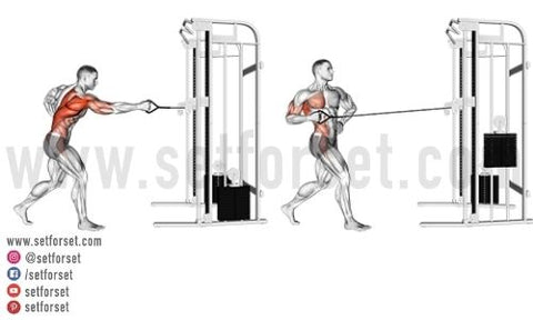 pulley machine back exercise