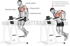 pushing exercises for triceps and chest