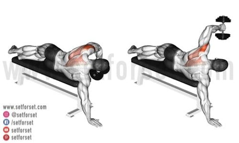 rear delt exercises with dumbbells