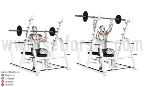seated front delt exercises