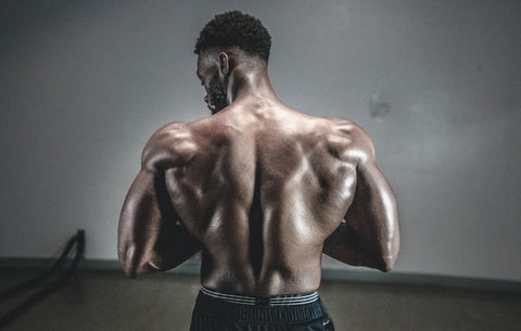 shoulder exercises with cables