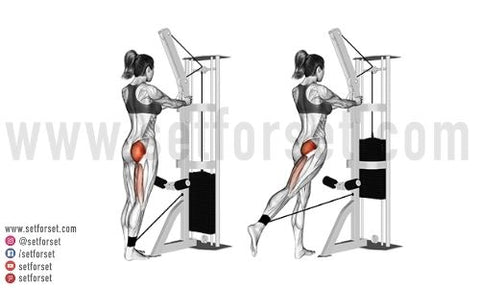 standing cable glute kickbacks