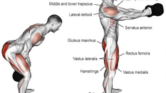 strengthen erector spinae muscles