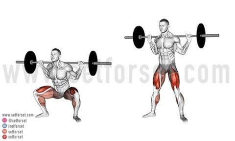 sumo squats muscles worked