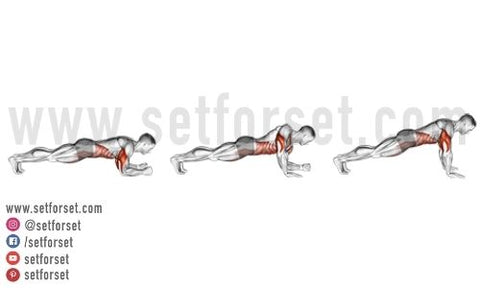 transverse abdominis exercises for low back pain