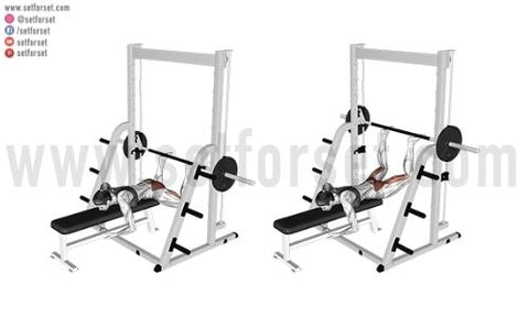 weighted reverse hyperextension exercises