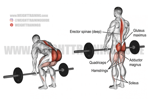 what are the benefits of deadlifts