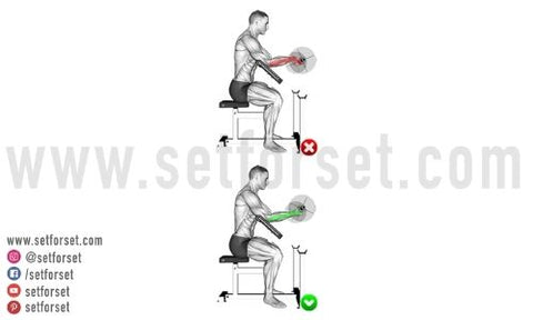 what bicep curls are best for the inner head
