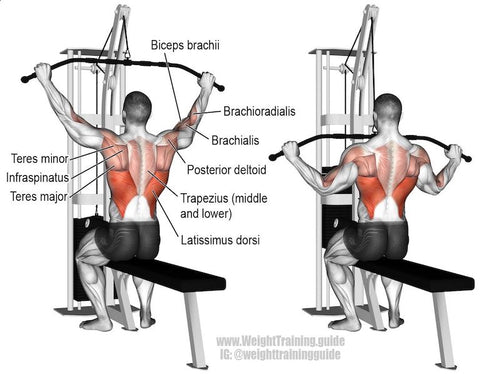 what exercises target the rhomboids