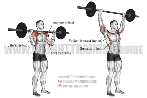 what is a compound exercise