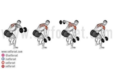 what is the best rear delt exercise
