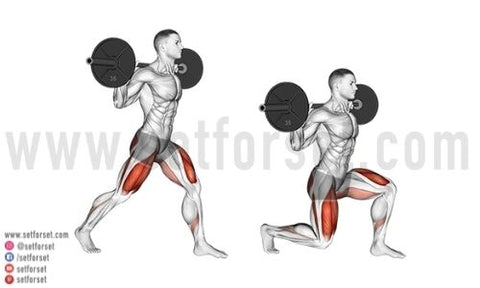 what muscles do split squats work